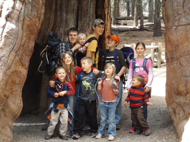 Kids enjoying the hike around the Sequoias