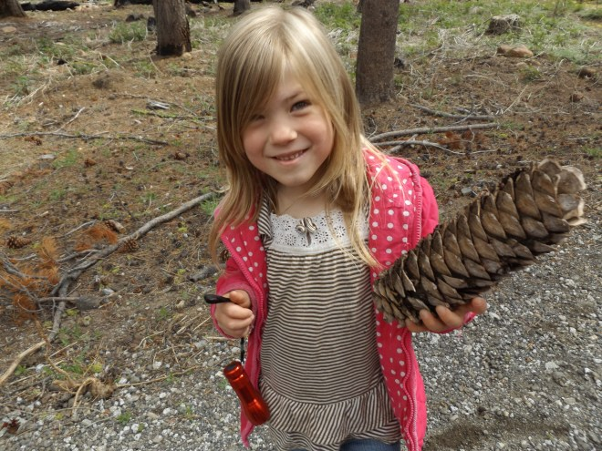 Amelia with a large pinecone.