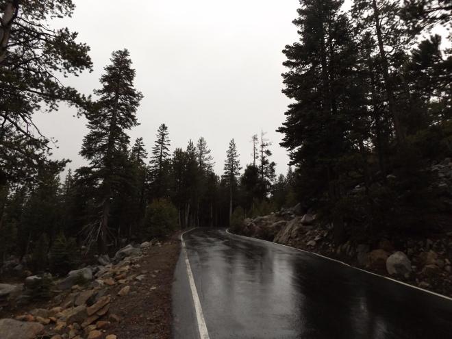 The curvy, narrow Ebbetts Pass.