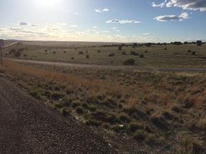 high desert in nm