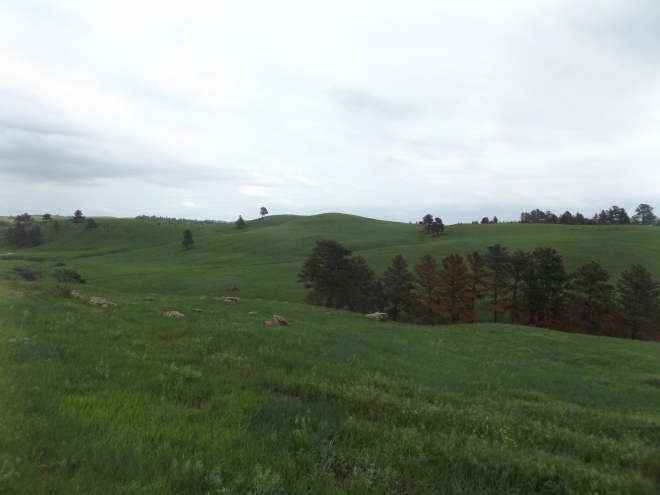 The South Dakota grasslands in Wind Cave National Park