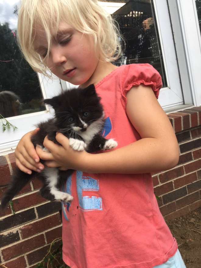 AnaClaire and kitten